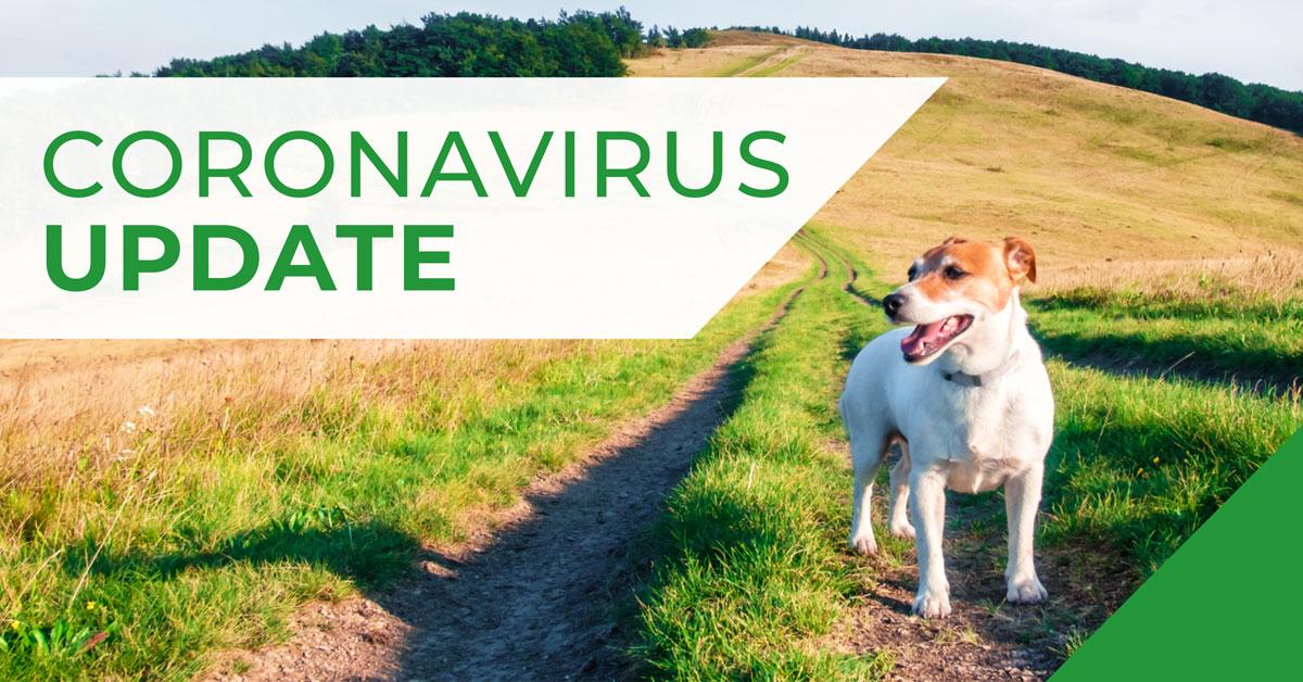 Poster for Corona Virus Update